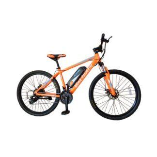 Bicicleta electrica E-Bike MalTrack
